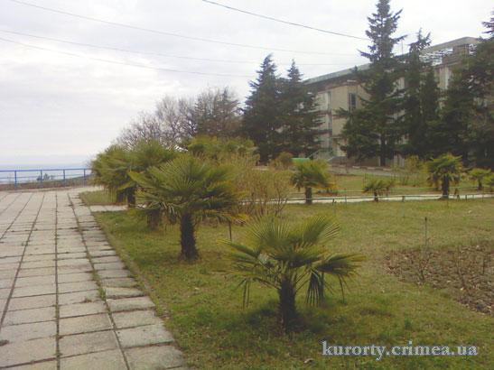 """Территория пансионата """"Донбасс""""."""