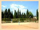 Спортивные площадки санатория.
